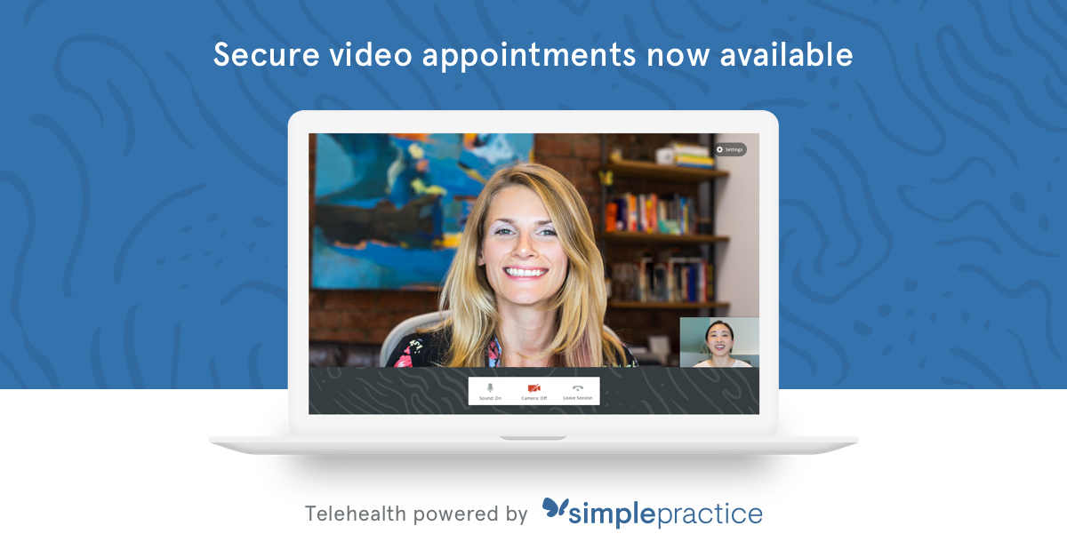 telehealth-blue banner secure video appts
